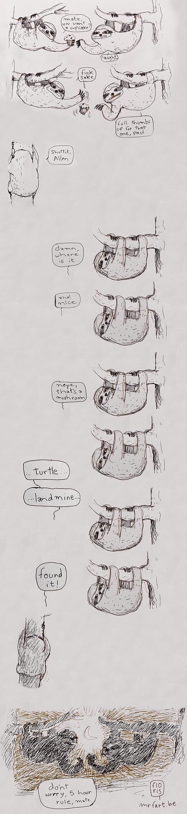 Sloths rules